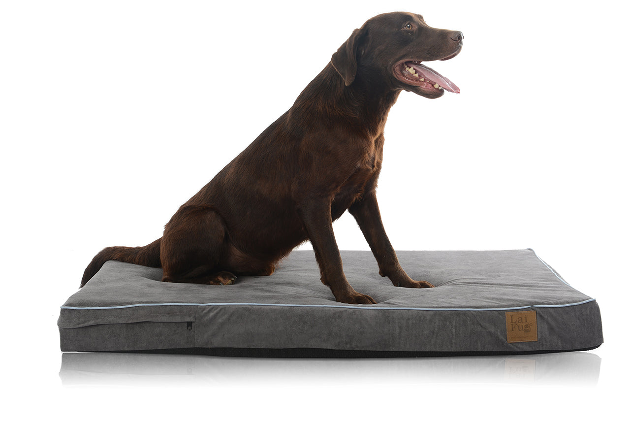 "Large Dog Bed 46""x28""x4"" with Pillow Memory Foam"