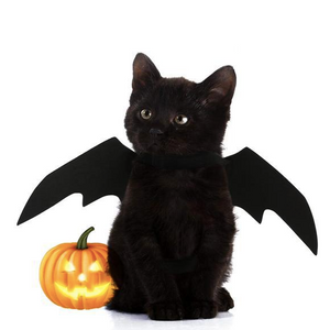 Adorable Bat Wing Costume for Pets