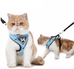 Cat Adventure Harness Suit Leash