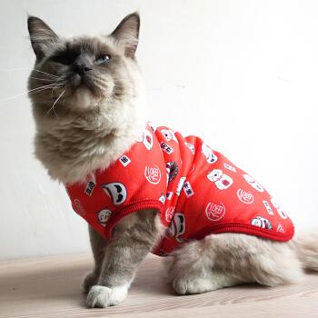 Warm vest with interesting printing for kitty