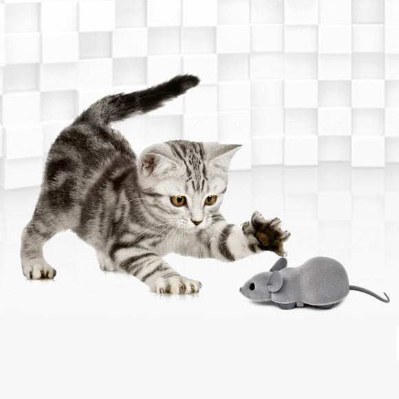 APP-controlled Smart Mouse Hunt Cat Toy