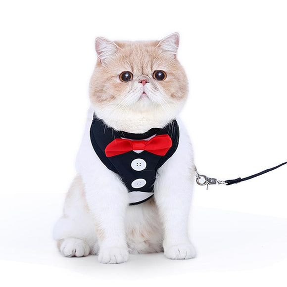 Cat Harnesses with Bow tie