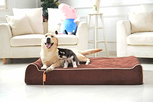 Extra Large Memory Foam Dog Bed