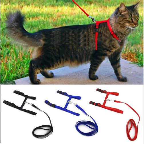 Cat Adjustable Nylon Harness And Leash