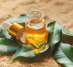 Tea Tree Oil as Natural Remedies For Psoriasis  At Home