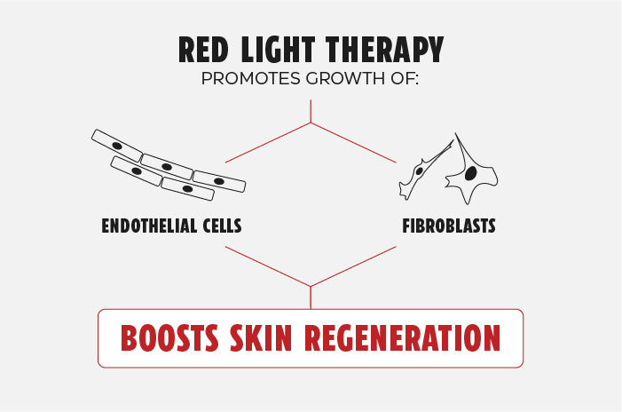 Red light therapy boosts skin regeneration