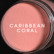DCH12 Caribbean Coral