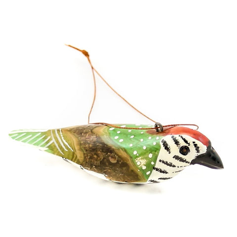 African Woodpecker Wood Bird Christmas Ornament