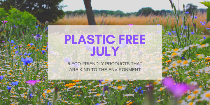 5 eco-friendly products that are kind to the environment
