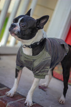 Zoo Supply Camo T for Dogs