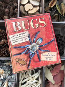 bugs a pop up journey