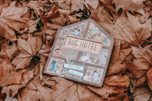 bug hotel - big little noise