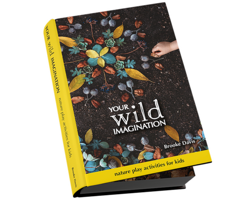 your wild imagination ~ author signed copies (WAS $35, NOW $29)