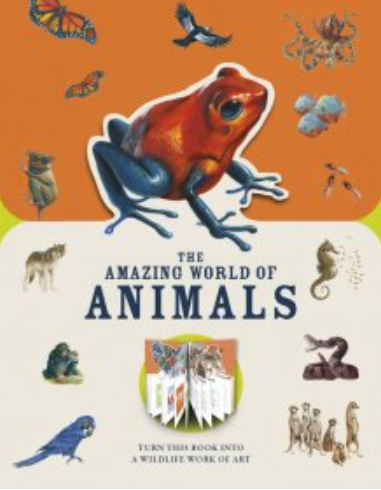 the amazing world of animals (Was $28, NOW $22)