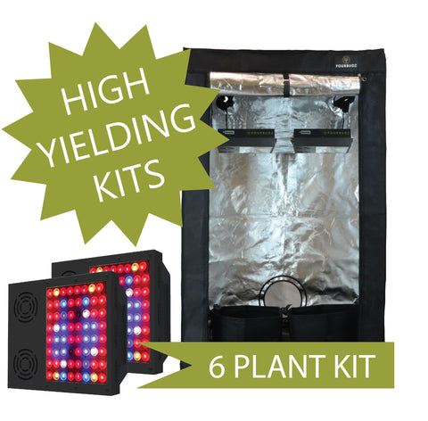 6BUDZ LED GROW KIT [4X4 TENT]