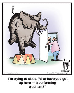 I'm trying to sleep. What have you got up here — a performing elephant?