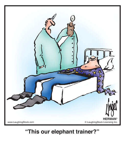 This our elephant trainer?