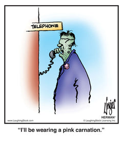 I'll be wearing a pink carnation.