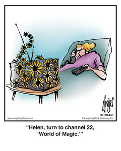 Helen, turn to channel 22, 'World of Magic.'