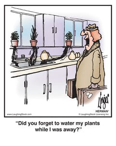 Did you forget to water my plants while I was away?