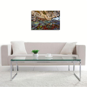 Wild Earth by John Mazlish, Photograph on semi-gloss, dye sublimated aluminum