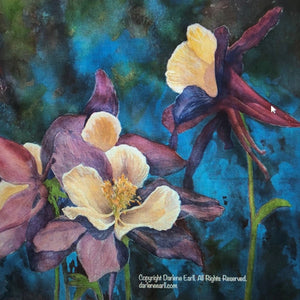 Columbines by Darlene Earll