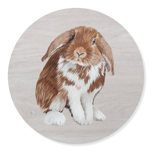 """Nia (Lop Bunny)"" By Danny Dyer, Polymer Clay on Whitewashed MDF Round Board"