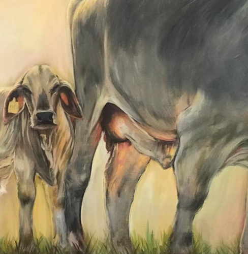"""Brahman Mom and Calf"" By Leigh Stokes, Acrylic on Canvas"