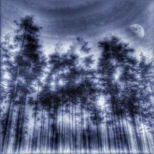 """Tree and Moon"" By Arne Larsen, Digital Photography"