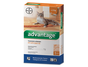 antipulgas para gatos advantage bayer