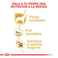 ROYAL CANIN PERROS ADULTOS WEST TERRIER