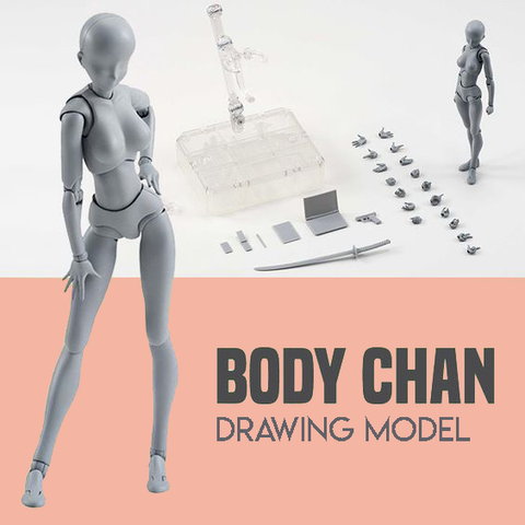 Body Chan Figure Drawing Model