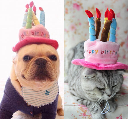 Birthday Cake Party Hat