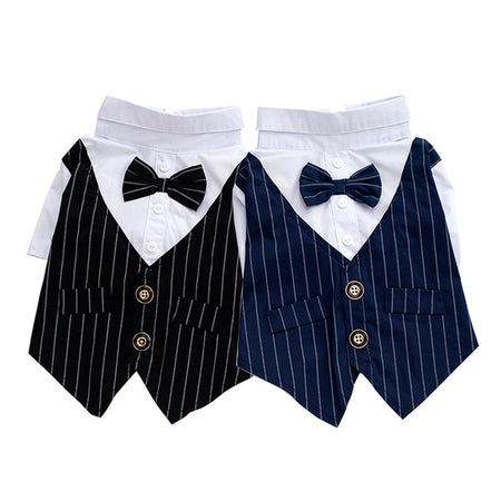 Formal Vest & Bowtie Outfit