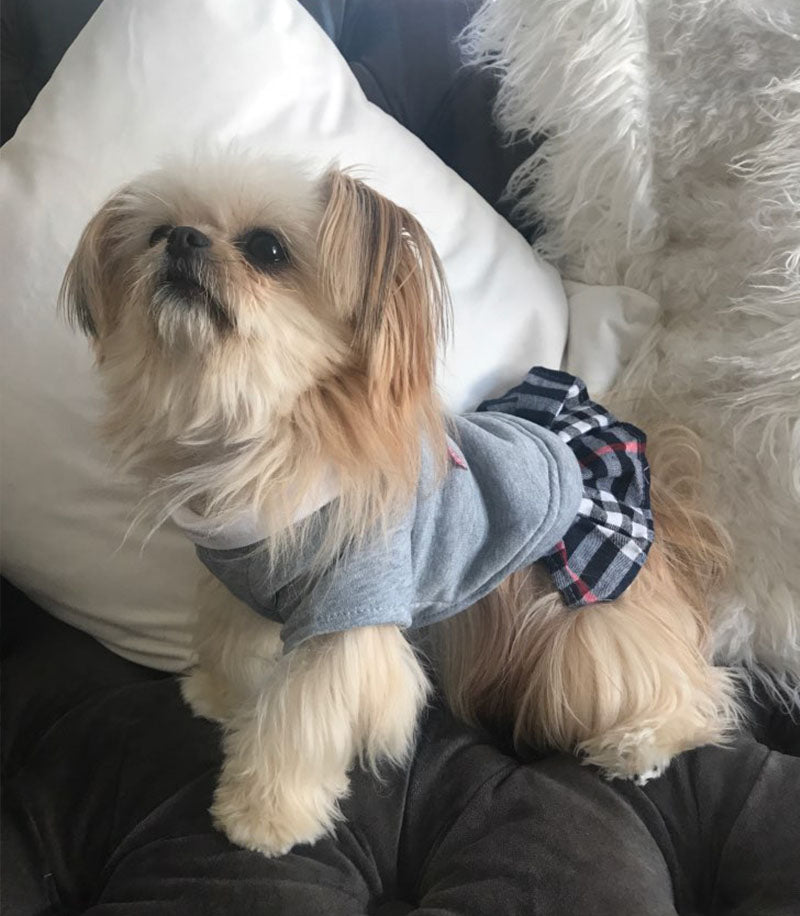 Preppy School Uniform Dog Outfit