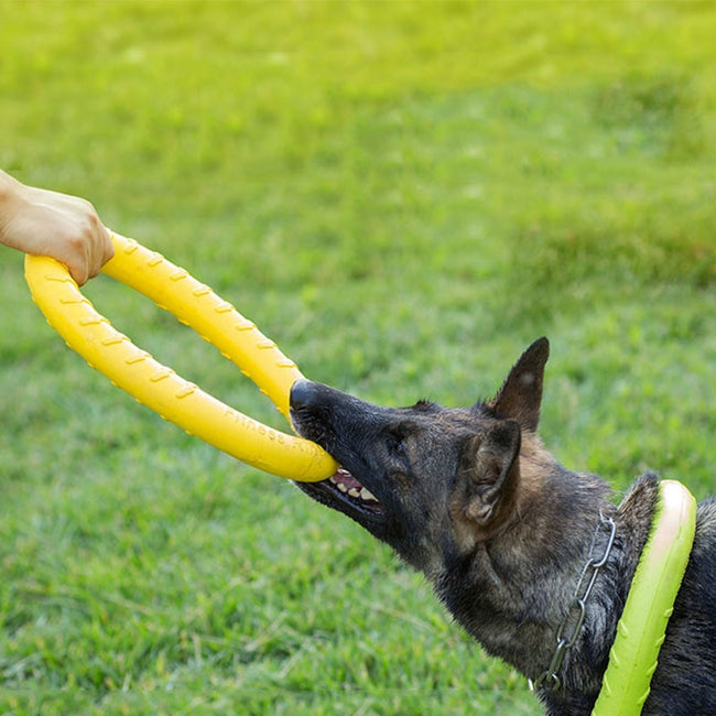 Durable Floating Dog Ring Toy for Large Dogs