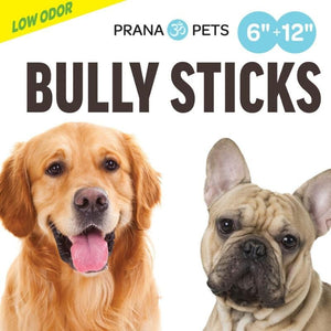 Dogs- Bully Sticks