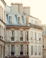 Pale Paris Morning