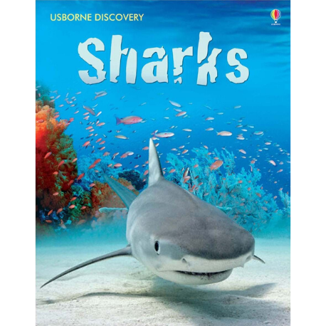Usborne Discovery: Sharks - Adams Attic