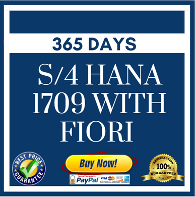 S/4 HANA 1709 with Fiori - 365 Days