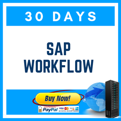 SAP WORKFLOW (30 Days)