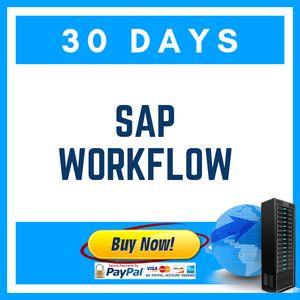 SAP WORKFLOW 30 DAYS