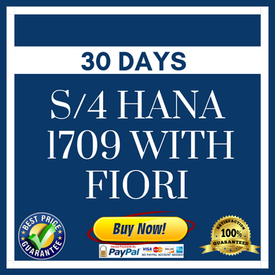 S/4 HANA 1709 with Fiori - 30 Days