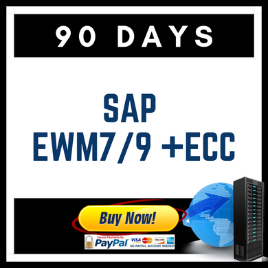 SAP EWM7/9 + ECC 90 Days