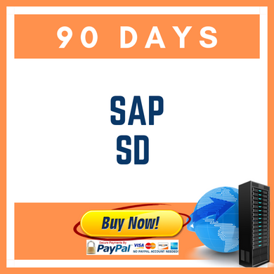 SAP SD 90 DAYS