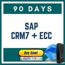 SAP CRM7 + ECC 90 DAYS