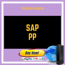SAP PP 90 DAYS