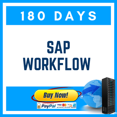 SAP WORKFLOW (180 Days)