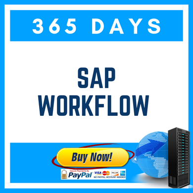 SAP WORKFLOW (365 Days)