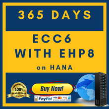 Load image into Gallery viewer, ECC6 with EHP8 on HANA - 365 Days